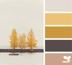 thankful tones from design-seeds. New lounge colours? Imagine every texture possible in these colours. Scheme Color, Colour Pallette, Colour Schemes, Color Patterns, Color Combos, Colour Match, Design Seeds, Pantone, Impression Textile