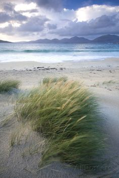 Beach at Luskentyre with Dune Grasses Blowing Photographic Print by Lee Frost at AllPosters.com