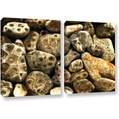 ArtWall Kevin Calkins Petoskey Stone Collage 2-Piece Gallery-Wrapped Canvas Set, Size: 18 x 28, Black