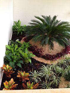 CASA CP-34: Jardines de estilo moderno por EcoEntorno Paisajismo Urbano