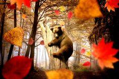 nice autumn hug wallpaper