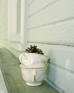 Winter Teacup Photograph  Pine Cone Tea  8x10 print by ErinBphoto #fpoe