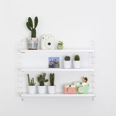 Cacti shelf / Candy Pop: www.candypop.uk.com/ #roomdecor