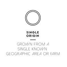 Single Origin, Math Equations, The Originals