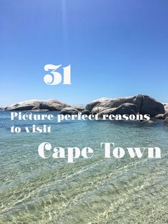 The beaches, the wine, Table Mountain, the penguins, the food, Cape Point - here are my favorite reasons to visit Cape Town, South Africa.