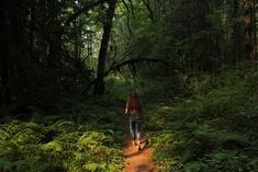 A 2-Hour Dose of Nature Each Week Could Make You Happier and Healthier National Health Service, Boost Creativity, Mental And Emotional Health, Feeling Stressed, Doctor In, Lower Blood Pressure, Health Center, Beach Walk, Go Outside