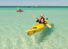 I want to do this! Kayaking the pristine waters of the Sea of Cortez