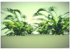 #jungle - cgtrader https://www.cgtrader.com/free-3d-models/plant-tree/shrub-bush/low-poly-jungle-plant