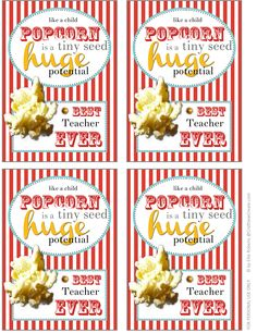 thank you for Popcorn Printable for primary teachers