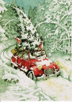 De twee oude dames halen een kerstboom met de auto