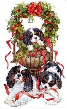 Cavalier King Charles Christmas cards are 8 x 5 and come in packages of 12 cards. One design per package. All designs include envelopes, your personal message, and choice of greeting. Christmas Scenes, Noel Christmas, Christmas Animals, Vintage Christmas Cards, Christmas Pictures, Cavalier King Charles Dog, King Charles Spaniel, Illustration Noel, Illustrations