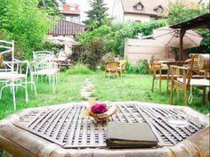 Ceai la Vlaicu, str. Aurel Vlaicu 47