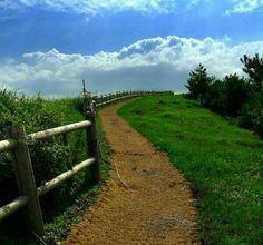 제주 올레1코스, 걸어서 제주여행 중 맞딱뜨린 너무도 아름다운 길! 마치 하늘길을 오르는듯한 착각이... #트위터 @stepanoya님