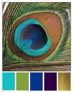 Bijuterias inspiradas no pavão e passo a passo: Tudo vem desse animalzinho maravilhoso e grandioso que insiste em ser o centro das atenções