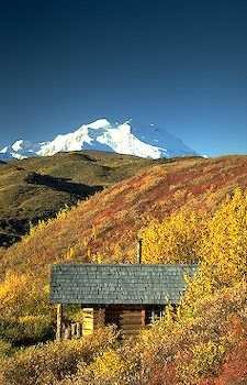 Autumn in Denali National Park, Alaska | #Wanderlust #Autumn #Travel