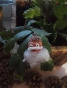Karácsonyi makkmanó:)