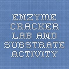 Enzyme Cracker Lab and Substrate Activity