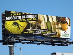 Valença - Caça ao mosquito da dengue