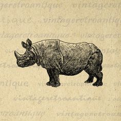 Rhino Graphic Printable Image Download by VintageRetroAntique