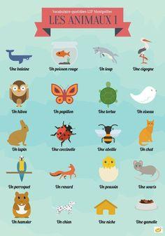 www.absolutely-french.eu Vocabulaire : les animaux Et vous, quel est votre animal préféré ? #vocabulaire #vocabulary #vocab #mots #simple #learnfrench #french #francais #apprendrelefrancais #learnfrenchwithfun