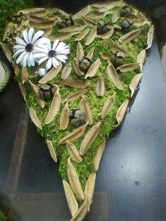 Machove srdce