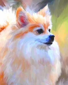 Pomeranian lovers will enjoy this portrait of a delightful cream colored version of their favorite breed. Pomeranian Husky Full Grown, Toy Pomeranian Puppies, Spitz Pomeranian, Pomeranians, Funny Puppies, Happy Paintings, Dog Paintings, Yorkie Terrier, Dog Portraits