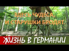 ЖИЗНЬ В ГЕРМАНИИ. NORDIC WALKING по лесу