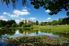 The University of Bath tops the Times Higher Education's league table revealing the best universities for student experience. How does your university fare? University Of Bath, Durham University, Best University, League Table, King's College, Top Universities, Dreams Do Come True, Exeter, Higher Education
