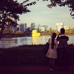 트래블러루앙프라방의 석촌호수 【러버덕】 러버덕 (Rubber Duck) 2014.10.13~ '러버덕 프로젝트'의 일환으로 러버덕이 서울 석촌호수에 전시된다. '러버덕'은 네덜란드 예술가 플로렌타인 호프만이 만든 노란색 고무 오리인형으로 최대 높이 16.5m에 달하며, 2007년 처음 선보여 전세계 16개국을 돌며 평화와 행복의 메시지를 전하고...