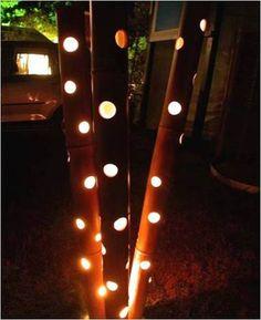 bambu iluminado