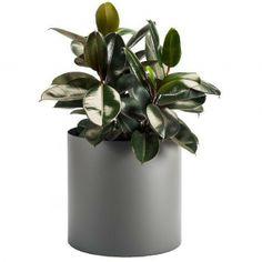 Planters Perfect - Round Aluminum Planter (Color - Pewter)  #metalplanter #metal #round #planter #planters