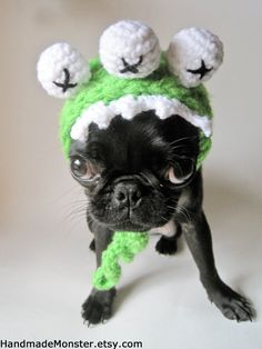 1000+ images about CROCHET - Pet Stuff on Pinterest Dog ...
