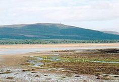 Sands of Loch Fleet and Sutherland monument.jpg - Battle of Skibo and Strathfleet, 1480.  Battle was prompted by Clan Donald's invasion of the area around Dornoch in northern Scotland.  Two attacks repulsed by local clans, Clan Sutherland and Clan Murray.  Result:  Sutherland & Murray victory.  Click pic for more info and aftermath - this was the final conflict between the MacDonalds & Sutherlands, an alliance was sealed with a marriage between the clans.