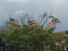 Aduana (11:37am) segun el reglamento estas banderas estan bien colocadas pero los árboles alrededor del area obstruyen la visión a ellas.