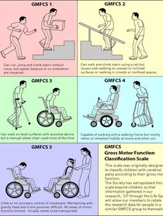Gross Motor Function Scale : Cerebral Palsy Society of NZ