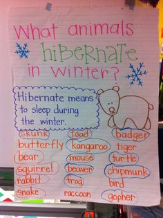 What Animals Hibernate in Winter anchor chart