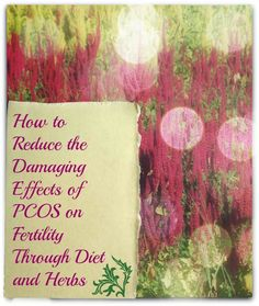 Here are some great tips on PCOS! #NaturalFertility