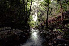 Light and darkness by Hidenobu Suzuki on 500px