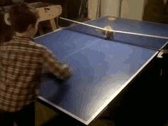 原來可以跟貓玩桌球~有機會要來試試~酷