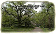 Hagyd az Úrra utadat... Biblical Quotes, Portal, Sidewalk, Urban, Pictures, Biblia, Photos, Walkways, Pavement
