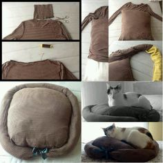 Cat Bed...gotta make one for my dog