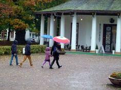 Herbstliche Malreise an die Ostsee | Zum Herbst an der Ostsee gehören auch Regentropfen (c) Frank Koebsch (2)