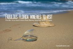 Fabulous Florida Wineries to Visit