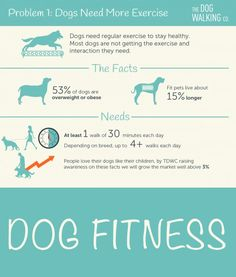 Dog fitness is very important! Tomorrow is Walking the Dog Day - so get out there and exercise with Fido!