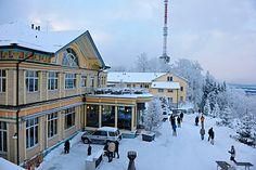 Üetliberg Uto Kulm im Winter Great Places, Switzerland, Explore, Mansions, World, House Styles, City, Travel, Beautiful