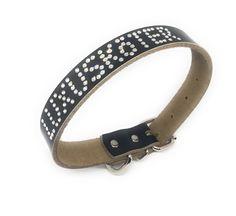 Belt, Personalized Items, Accessories, Fashion, Pet Dogs, Belts, Moda, La Mode, Fasion
