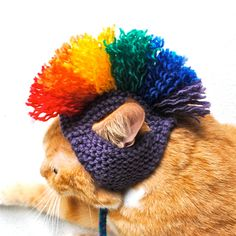 $15 Purple and Rainbow Mohawk: This hat was made with acrylic blend yarns and fits an average sized adult cat. Great for a gift or as a treat for your own kitten!