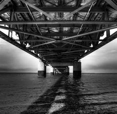 """Now, now, bridge. Stick to your swim lane."" #DTCLnovella More at: http://www.facebook.com/descendingthecorporateladder"