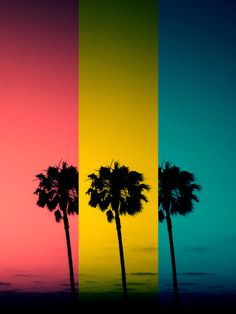 Vintage Palm Trees Art Print