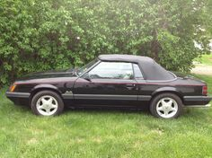1985 Ford Mustang -   1985 Ford Mustangs for Sale | Used on Oodle Marketplace - Ford mustang - wikipedia  free encyclopedia The ford mustang is an american automobile manufactured by ford. it was originally based on the platform of the second generation north american ford falcon a. 1985 ford mustang gt 302 /gt-40p heads dyno test - youtube Lamotta performance in longwood florida conducts a test of my 1985 mustang gt. specs: remanufactured 302 with gt-40p heads shorty headers 2 1/2 true…